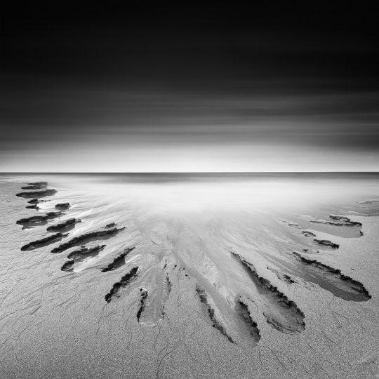 An Artist Called Nature - Zoltan Bekefy