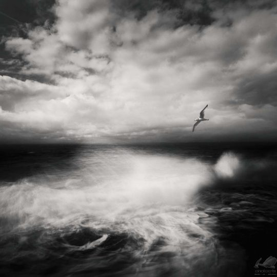 Atlantic Ocean I - Zoltan Bekefy