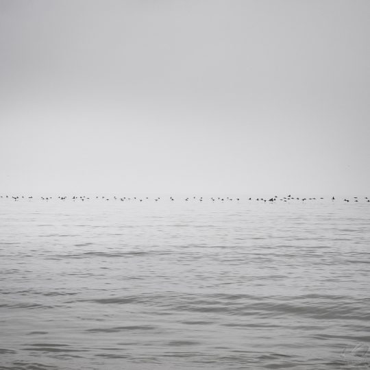 Baltic Sea II - Zoltan Bekefy.