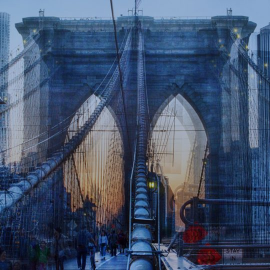 Brooklin Bridge - Claudia Furlani