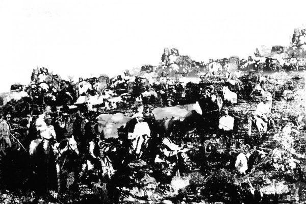 Cowboywork - Sandra Rauch