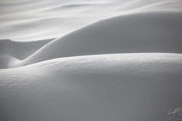 Erotic Winter - Laimonas Ciunys