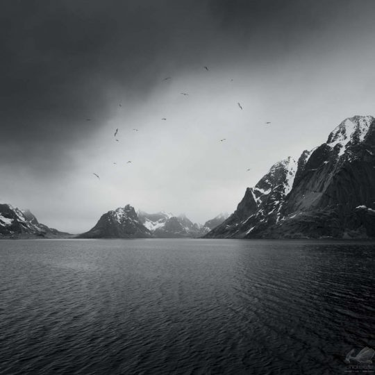 Lofoten Islands II - Zoltan Bekefy