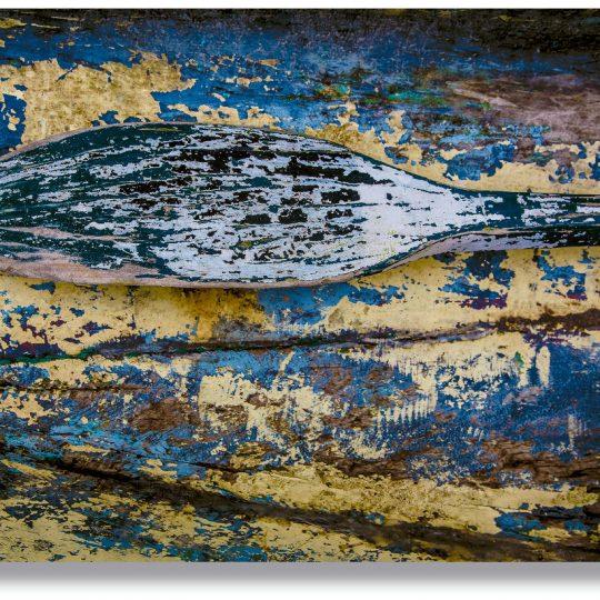 Remo da Canoa Amarela - Daniela Dragone