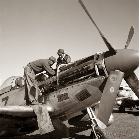 Tuskegee Airmen I - Toni Frissel
