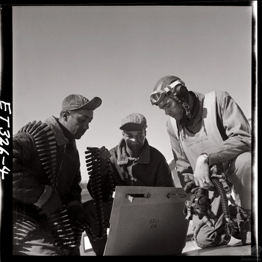 Tuskegee Airmen III - Toni Frissel