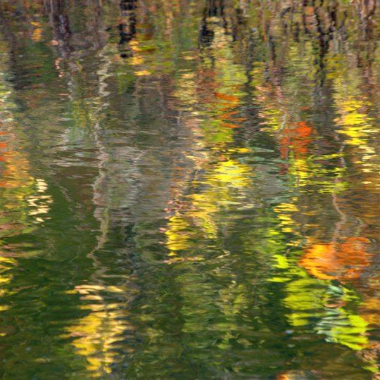 Monet - Helena Cooper