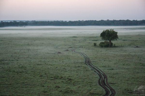 Amanhecer na África - Thomaz Salmi