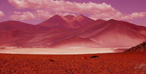 Atacama II - Flávia Bechara