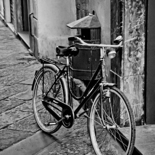 Bicicleta P/B - Flávio Russo