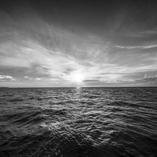 Zanzibar Sunset - João Bolan
