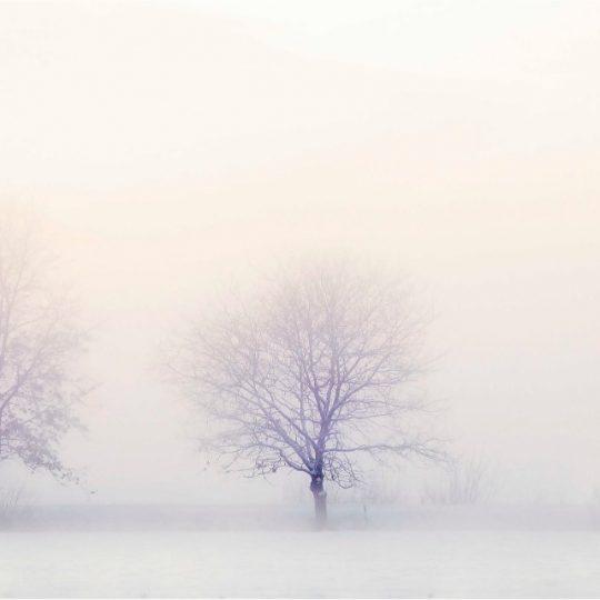 Winter Landscape - Ina Hoekstra