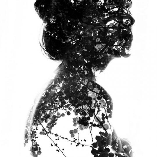 Scar VIII - Aneta Ivanova