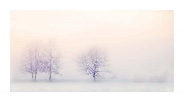 winter-landscape Heerenveen Nederland